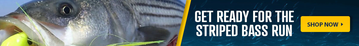 Get Ready for the Striped Bass Run, Shop Now